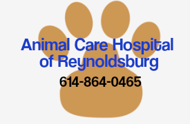 Animal Care Hospital of Reynoldsburg